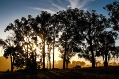 Boddington-sunset-credit-Tim-Allott_600px